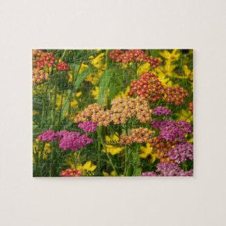 El jardín colorido florece rompecabezas