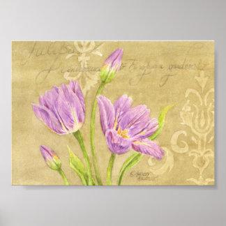 El jardín púrpura del poster del tulipán observa póster