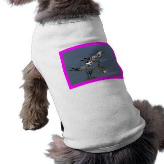 El jGibney Birds2CocoaBeach1 de la serie del artis Ropa Para Mascota