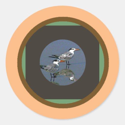 El jGibney Birds2CocoaBeach1 de la serie del Pegatinas Redondas