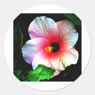 El jGibney Hibiscus72 de la serie de Artitst del Pegatina Redonda