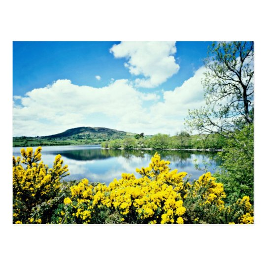 El lago de Camlough, condado abajo, Irlanda Postal