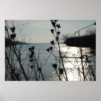 El lago en el fondo de malas hierbas cierra el foc póster