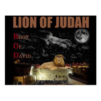El león de Judah en la pared occidental Postal