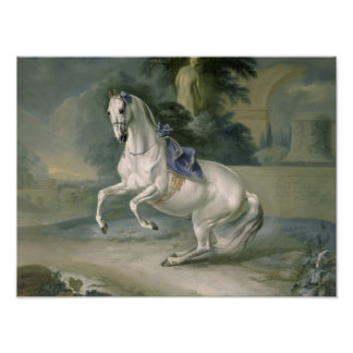 """El levade """"Leal"""" blanco del en del semental, 1721 Póster"""