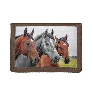 El librar maravilloso de la fauna de los caballos