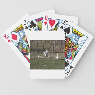 El luchar de los gansos baraja de cartas bicycle