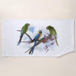 El Macaw repite mecánicamente la toalla de playa