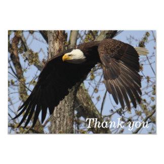 """El mate 3,5"""" de KMCphoto Eagle x 5"""" le agradece Invitación 8,9 X 12,7 Cm"""