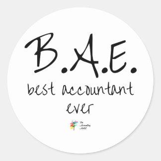 El mejor pegatina BAE del contable nunca