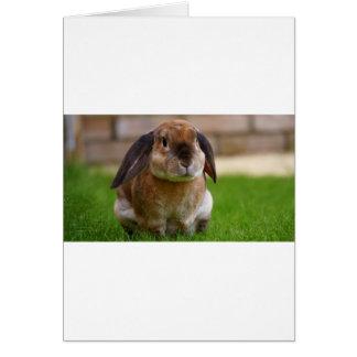 El minni del conejo lop tarjeta de felicitación