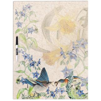 El narciso de los pájaros del Bluebird florece al Pizarra Blanca