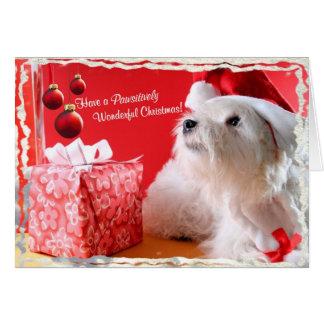 El navidad maravilloso de Westie desea 4 - Tarjeta