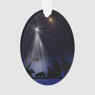 El navidad, religioso, natividad, protagoniza