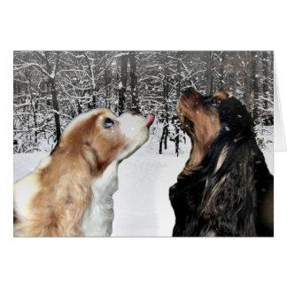 El nevar en tarjeta arrogante del perro de aguas
