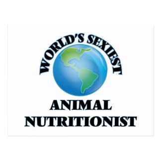 El nutricionista animal más atractivo del mundo postales