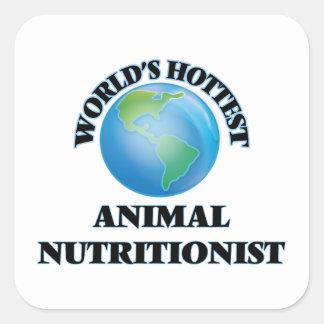 El nutricionista animal más caliente del mundo pegatina cuadrada