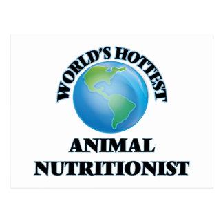 El nutricionista animal más caliente del mundo postales