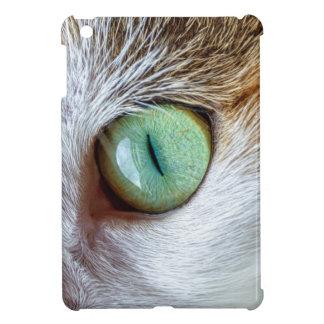 El ojo de gato verde que cautiva