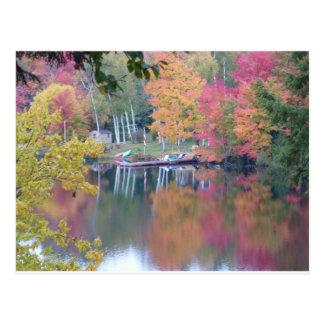 El otoño coloreó las hojas postal