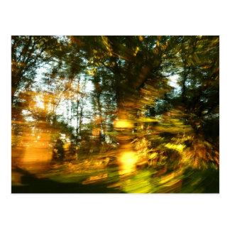 ¡El otoño deslumbra! Postal