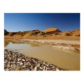 el paisaje del desierto de Namib en Sossusvlei Postal