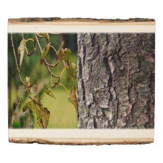 el panel de madera de la foto