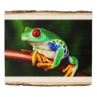 El panel de madera de la foto de la rana 1