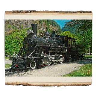 El panel de madera de la foto del arbolado del