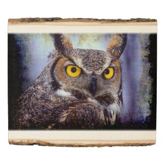 El panel de madera de la foto del búho 1