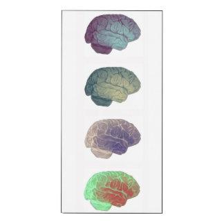 El panel vertical del cerebro