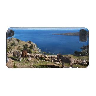 El paraíso de los burros funda para iPod touch 5