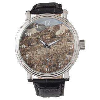 El paso del tiempo relojes de pulsera