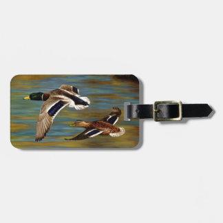 El pato silvestre Ducks volar sobre la charca Etiqueta Para Maletas