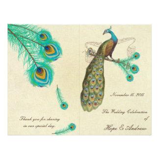 El pavo real empluma el programa 2 del boda folleto 21,6 x 28 cm