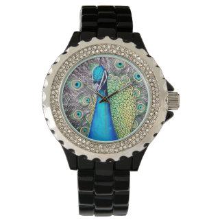 El pavo real reloj de pulsera