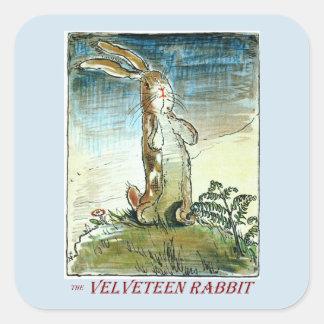 El pegatina del conejo de la pana