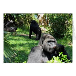 El pensador - gorila de la tierra baja - tarjeta