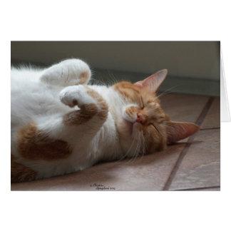 El pensamiento adorable del gato en usted carda tarjeta de felicitación