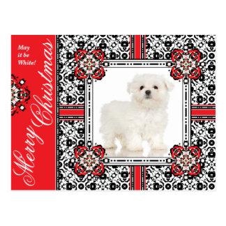 El pequeño perro mullido le desea el navidad postal