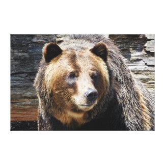 El perfil del oso grizzly envolvió la impresión de