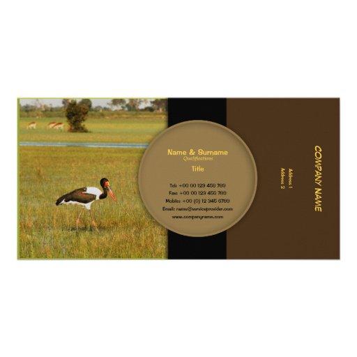 El perfil salvaje elegante de los pájaros carda pe tarjetas fotograficas personalizadas