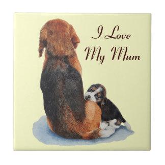 el perrito y la momia lindos del beagle persiguen azulejo cuadrado pequeño