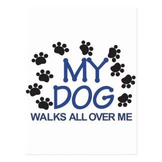 El perro camina las patas postal