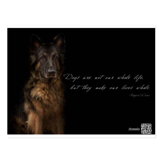 """el """"perro cita """" postal"""
