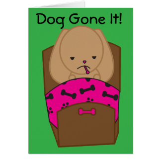 El perro enfermo consigue la tarjeta bien