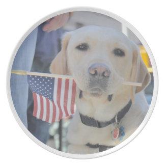 El perro patriótico plato para fiesta