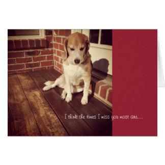 El perro triste que le falta carda tarjeta
