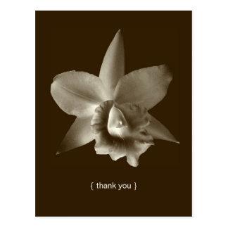 El personalizado de la foto de la flor de la postal
