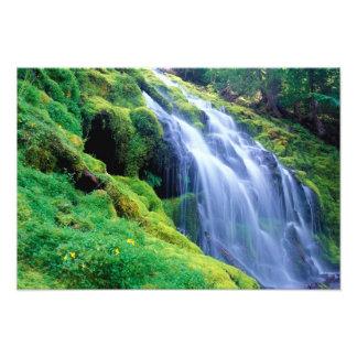 El poder baja en las cascadas centrales de Oregon Fotografía